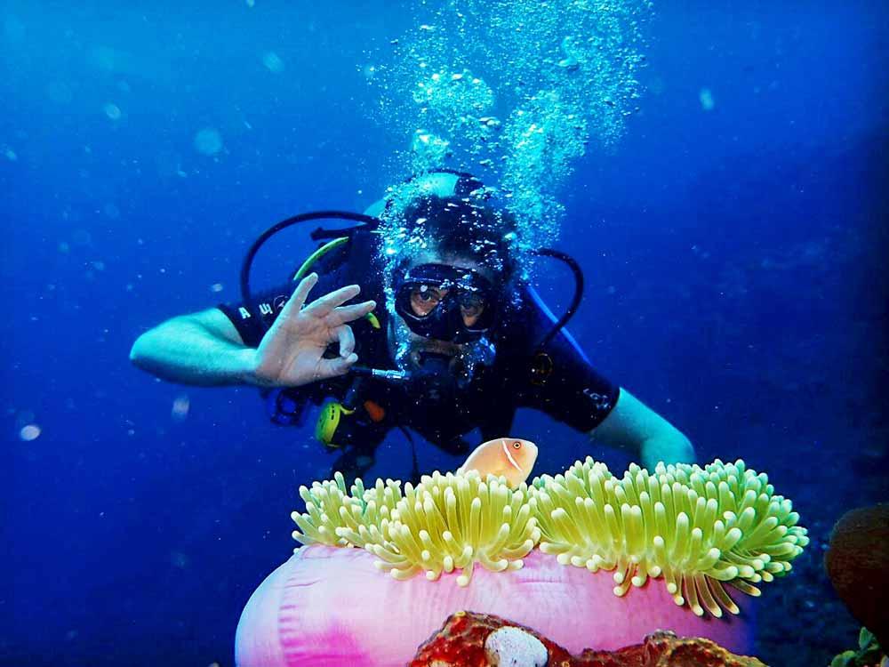 Diver with Fish Anemone Tulamben Bali Drop Off