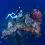 Scuba diver with Coral Formation and Barrel Sponge at Tulamben Bali Liberty Wreck Dive Site