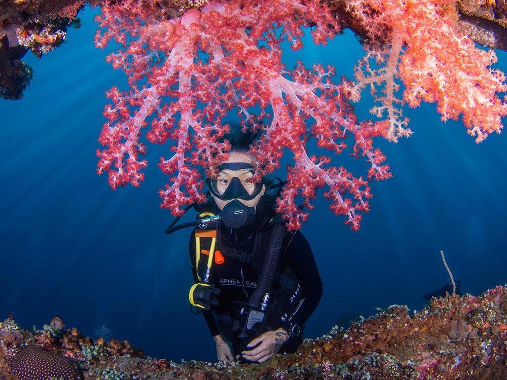woman diving at the Liberty wreck in Tulamben, Bali